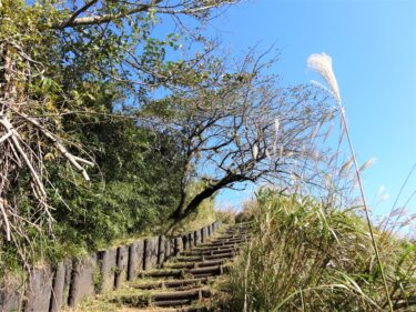 【Hiking Course Map】Mt. Ono (Paved Trail) – 大野山