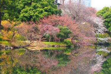 【Park & Garden Map】Shinjuku Gyoen National Garden – 新宿御苑