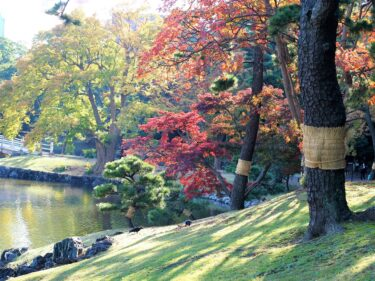 【Park & Garden Map】Hamarikyu Gardens – 浜離宮恩賜庭園