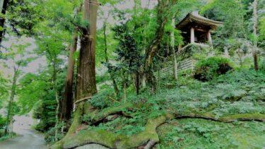 【Hiking Course Map】Lake Sagami & Mt. Sekiro – 相模湖&石老山ハイキングコース