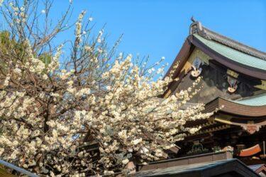 【Park & Garden Map】Yushima Tenjin Shrine – 湯島天神