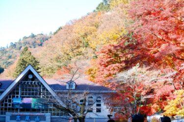 【Hiking Course Map】Mount Takao Trail No.1 & 4 – 高尾山1号路・4号路マップ
